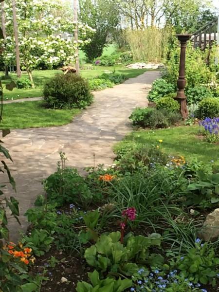 Garten impression (5)