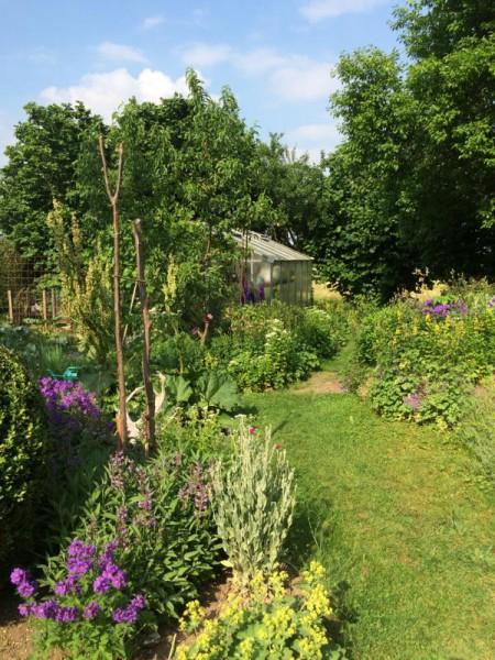 Gartenbilder (9)