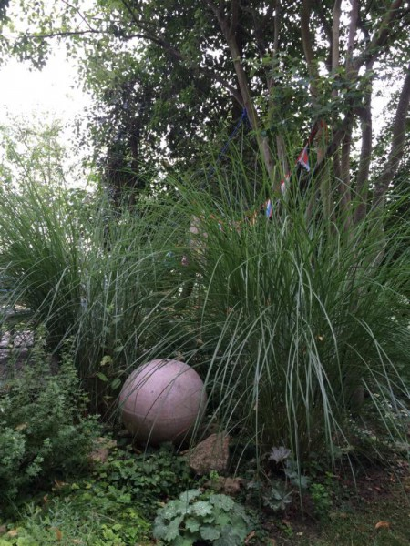 Garten (6)