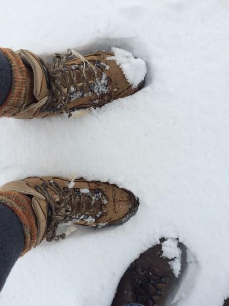 Winterimpressionen (3)