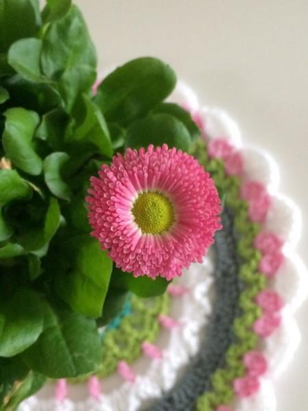 crochet mandala (2)