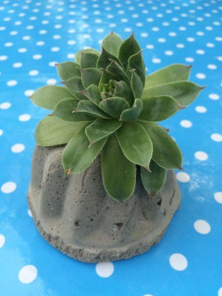 gartendeko aus beton (4)