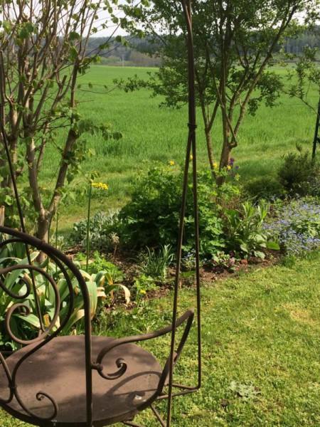 Garten impression (11)