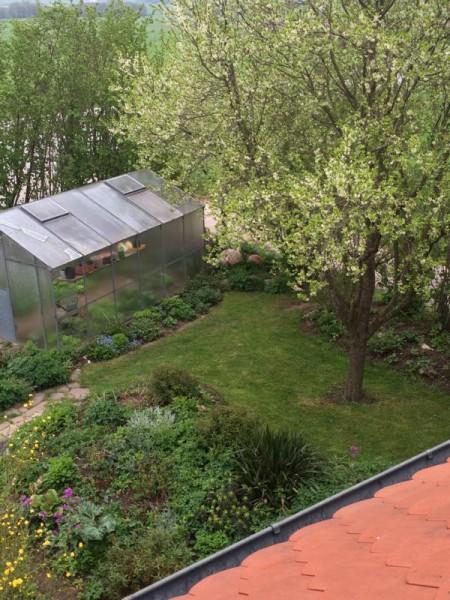 Garten impression (2)