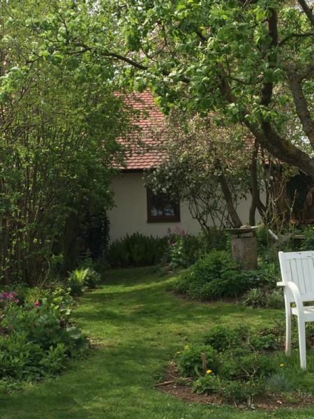 Garten impression (9)