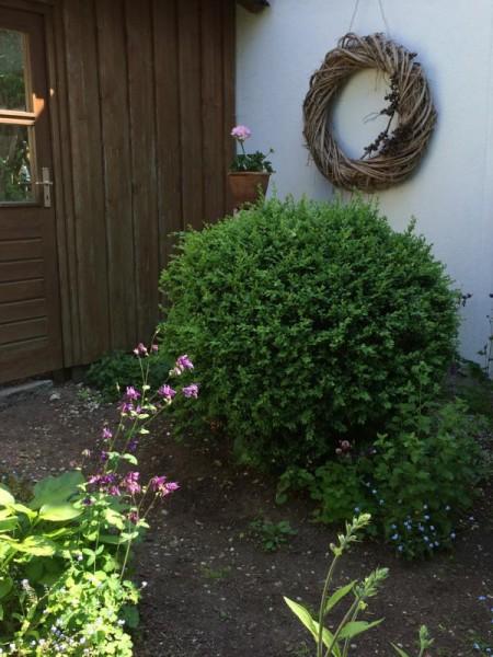Gartenbilder (7)