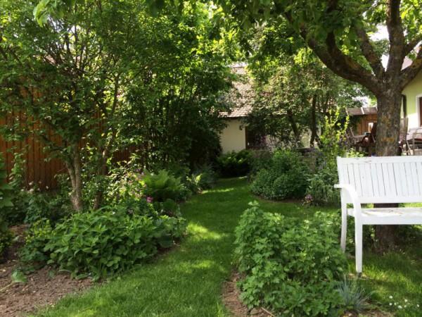 Gartenbilder (8)