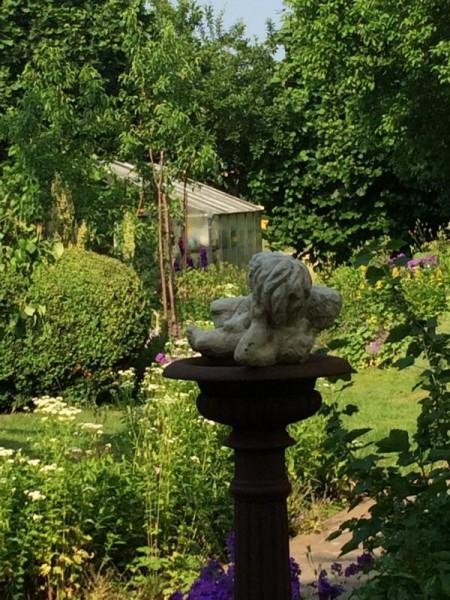 Gartenbilder (2)