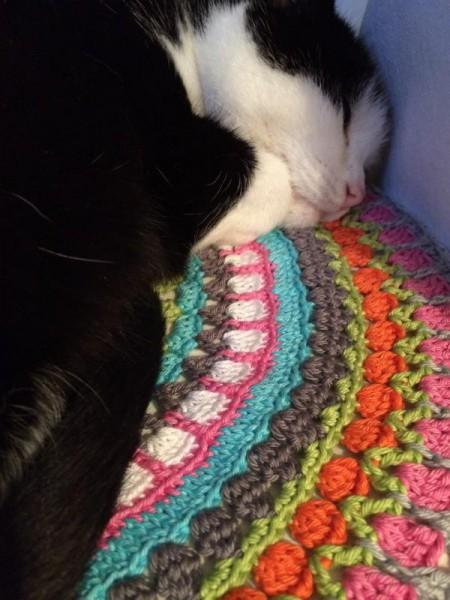 Katze auf Mandala